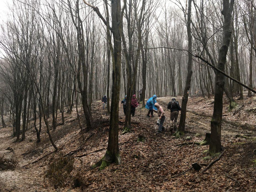 Résztvevők az ereszkedés utolsó néhány méterén a csúszós avaron az erdőben